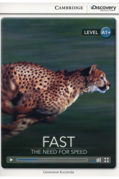 Fast: The Need for Speed