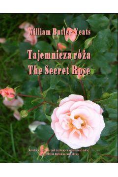 Tajemnicza róża