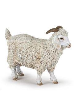 Koza angorska