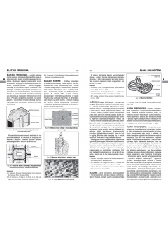 Encyklopedia szkolna - biologia