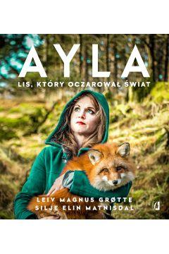 Ayla. Lis, który oczarował świat