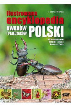 Ilustrowana encyklopedia owadów i pajęczaków Michał Grabowski Radomir Jaskuła Krzysztof Pabis