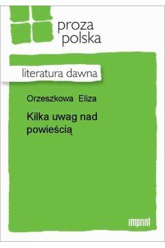 Kilka uwag nad powieścią