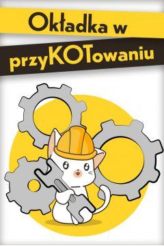 Pan Wołodyjowski - Pan Michael