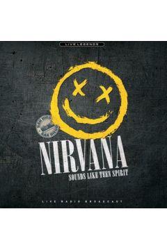 Sounds Like Teen Spirit - Płyta winylowa