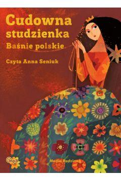 Cudowna Studzienka Baśnie Polskie audiobook