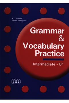 Grammar & Vocabulary Practice Intermediate B1
