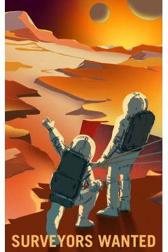 Surveyors Wanted - plakat