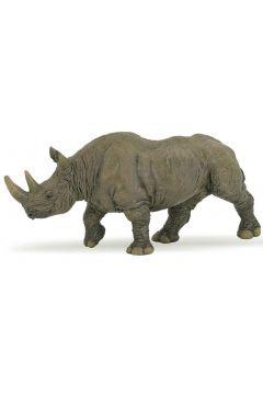 Nosorożec czarny