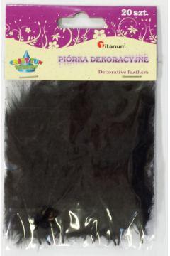 Piórka Dekoracyjne Czarne 283026