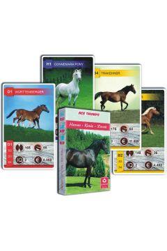 Kwartet - Konie. Karty do gry Cartamundi