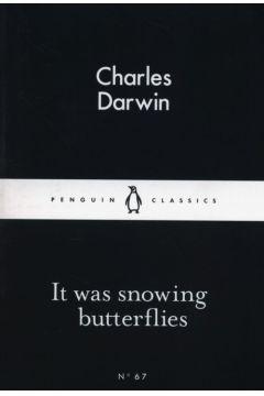 It Was Snowing Butterflies