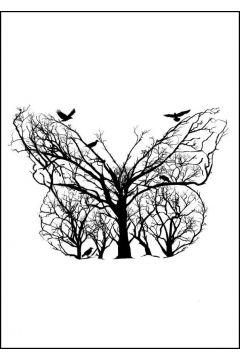 Motyl - plakat