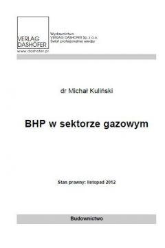 BHP w sektorze gazowym