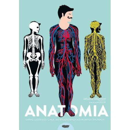 Anatomia obraz ludzkiego ciała na wyjątkowych ażurowych rycinach