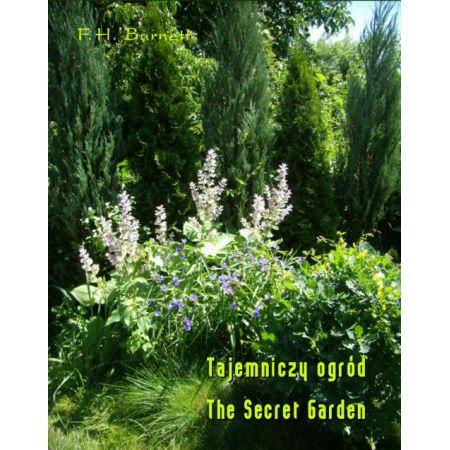 Tajemniczy Ogród The Secret Garden