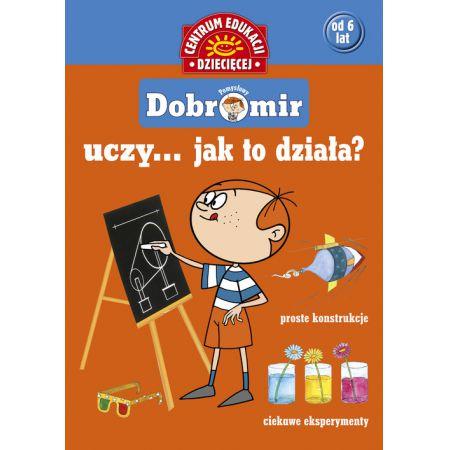 Pomysłowy Dobromir uczy... Jak to działa