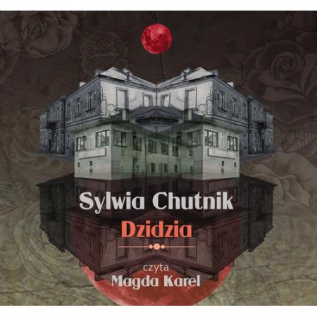 Dzidzia (książka audio)