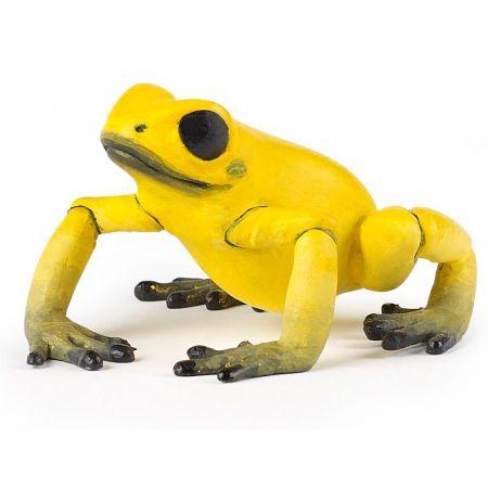 Żaba równikowa żółta