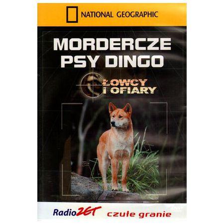 Mordercze psy dingo. Łowcy i ofiary
