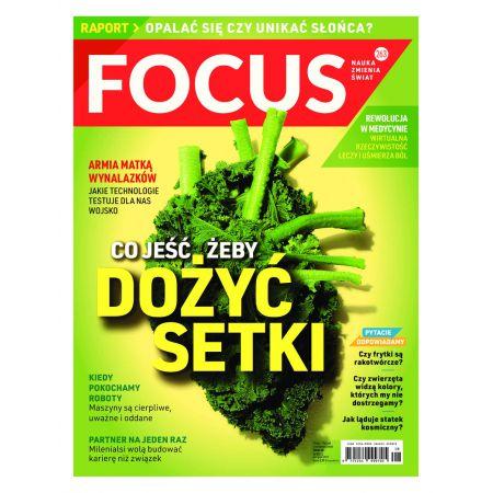 Focus 8/2017