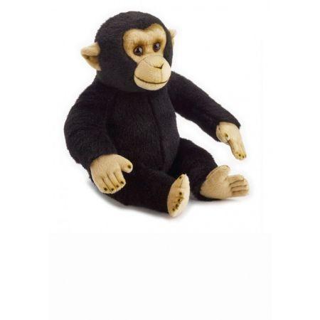 Szympans Plusz