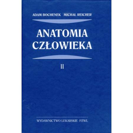 Anatomia czlowieka