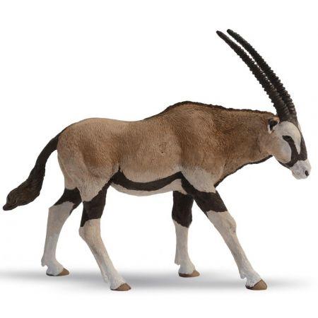 Antylopa Oryx